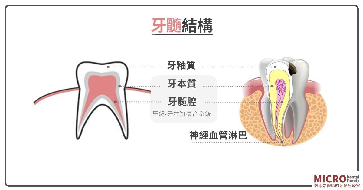 牙齦膿包 d
